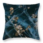 Aspen Leaves Frozen In Lake Throw Pillow