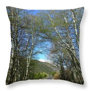 Aspen Lined Road Throw Pillow
