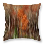 Aspen Motion II, Sturgeon Bay Throw Pillow