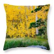 Aspen Pond Throw Pillow