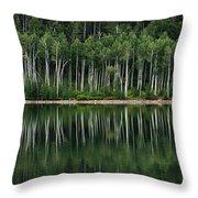 Aspen Reflections Throw Pillow