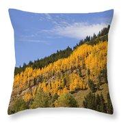 Aspen Ridge San Juan Mountains Throw Pillow