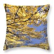 Aspen Sky Throw Pillow