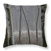 Aspen Stand In A Snowstorm Throw Pillow