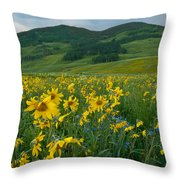 Aspen Sunflower And Mountain Landscape Throw Pillow