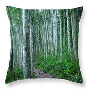 Aspen Trails  Throw Pillow