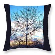 Aspen Tree At Sunset Throw Pillow