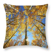 Aspen Tree Canopy 2 Throw Pillow