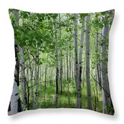 Aspen Trees Colorado Throw Pillow
