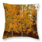 Aspen Trees With Autumn Leaves  Throw Pillow