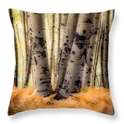 Aspen Trees With Ferns Throw Pillow