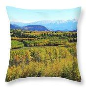 Aspen Valley Throw Pillow