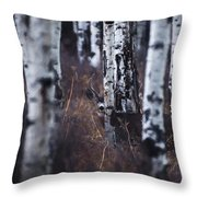 Aspen View 2 Throw Pillow