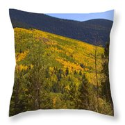 Aspen Vista Throw Pillow