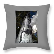 Aspens And A Cool Breeze Throw Pillow