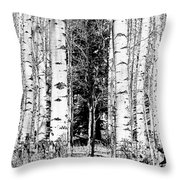 Aspens And The Pine Black And White Fine Art Print Throw Pillow
