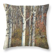 Aspens At Dusk Throw Pillow
