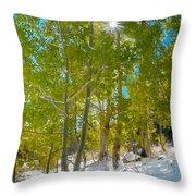 Aspens At Pine Creek Basin Throw Pillow