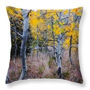 Aspens In Autumn Throw Pillow