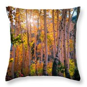 Aspens In Fall Color Throw Pillow