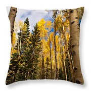Aspens In Santa Fe 3 Throw Pillow
