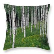 Aspens In Spring Throw Pillow