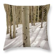 Aspens In Winter 2 Panorama - Santa Fe National Forest New Mexico Throw Pillow