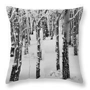 Aspens In Winter Throw Pillow
