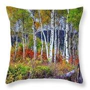 Aspens Meet Autumn Throw Pillow