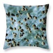 Aspergillum Fungus Throw Pillow
