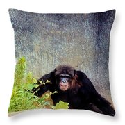 Asphalt Jungle Throw Pillow
