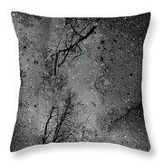 Asphalt-water-tree Abstract Refection 03 Throw Pillow