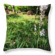 Asphodelus II Throw Pillow