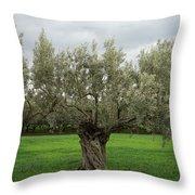 Aspropyrgos3 Throw Pillow