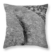 Ass Crack New Mexico In Black And White Throw Pillow