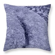 Ass Crack New Mexico In Cyan Throw Pillow