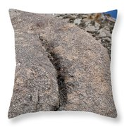 Ass Rock New Mexico Throw Pillow