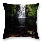 Assaranca Waterfall Throw Pillow
