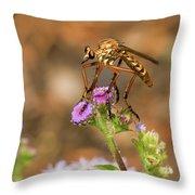 Assasin Fly Throw Pillow