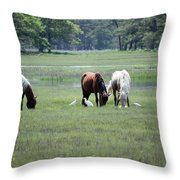 Assateague Island - Wild Ponies And Their Buddies  Throw Pillow