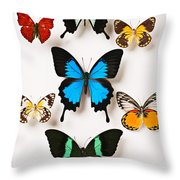 Assorted Butterflies Throw Pillow