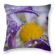 Aster And Dew Throw Pillow