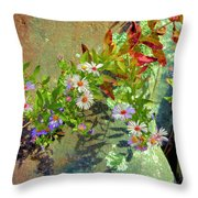 Aster Wildflowers Throw Pillow