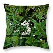 Asters And Fringed Grass-of-parnassus And Red Monkeyflowers On Highline Trail In Glacier National Pa Throw Pillow