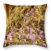 Asters In Autumn Throw Pillow