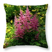 Astillbe In Light And Shadow Throw Pillow