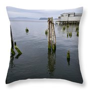 Astoria Waterfront Throw Pillow