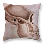 Astralopithecus Afarensis Cranium Throw Pillow
