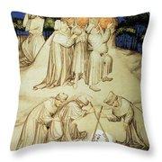 Astronomers Throw Pillow