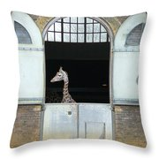 Asymmetrical Giraffe  Throw Pillow